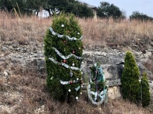 Capital of TX 360 Highway Decorated Trees