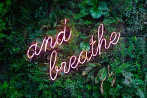and breathe neon sign on tree