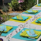 Company Picnic Table Setting