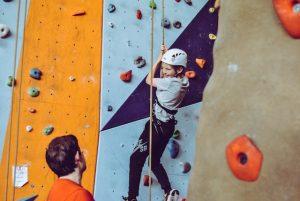 Rock Climbing Wall at Company Picnic